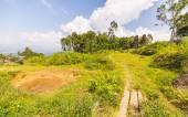 Traditional Toraja village in idyllic landscape — Stock Photo