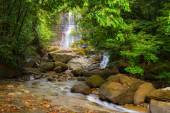 Waterfall and stream in the rainforest of Borneo — Stock Photo