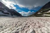 Red melting snow at high altitude in the Alps — Stock Photo