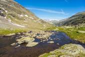 High altitude alpine stream in summertime — Stock Photo