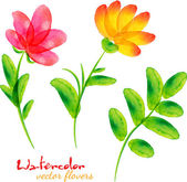 Bright watercolor painted vector flowers set — Stock Vector