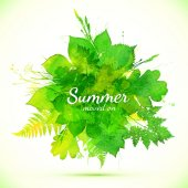 Summer green watercolor painted foliage banner — Stock Vector