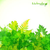 Green summer foliage vector background — Stock Vector