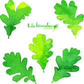 Summer green watercolor painted foliage set — Stock Vector
