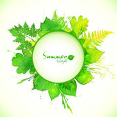 Summer leaves circle banner — Stock Vector