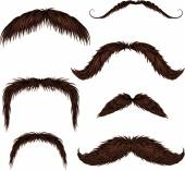 Brown different style isolated mustaches set — Stock Vector