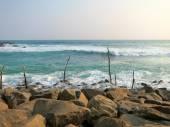 Fishermens sticks at ocean coast in Sri-Lanka — Stock Photo