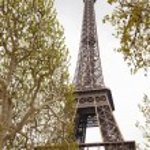 Tour Eiffel in Paris — Stock Photo #55951657