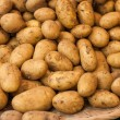 Basket of Fresh Potatoes — Stock Photo #56003297
