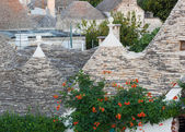 Trulli, the typical old houses in Alberobello. — Foto de Stock