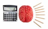 Concept of brain hemispheres between logic and creativity. — Stock Photo