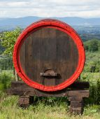Wooden barrel for wine placed in outdoor field — Stock Photo