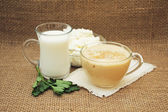 Fresh dairy products: milk, cheese and fermented baked milk. — Stock Photo