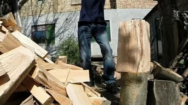 División de madera con un hacha de Zoom en — Vídeo de stock