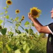 Agriculturist Checking His Sunflowers — Stock Video #59443619
