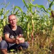 Successful Agriculturist in Front of His Corn Field — Stock Video #60429775