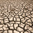 Drought  the ground cracks  — Stock Photo #53740315