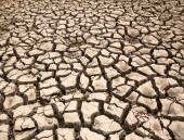 Drought  the ground cracks — Stock Photo