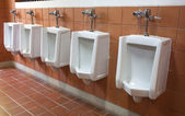 Men's room urinals — Stock Photo