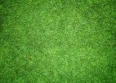 Greensward football — Stock Photo
