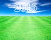 Lawn sky background year 2015. — Stock fotografie