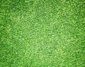 Golf Courses green lawn  — Stock Photo