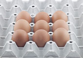 Eggs Many eggs — Stock Photo