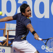 Постер, плакат: Spanish tennis player Nicolas Almagro