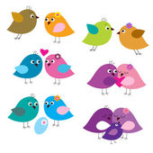 Set of colorful fun lovers of birds — Stock Vector