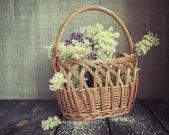 Ein Korb von Kräutern und Blumen. im Vintage-Stil. Majoran und Maedesuess — Stockfoto