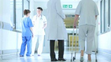 Medical Staff Assisting Senior Female Hospital Patient — Stock Video