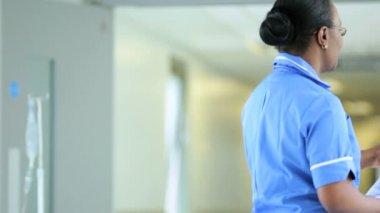 Medical Staff Talking Senior Female Hospital Patient — Stock Video
