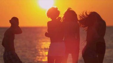Teenagers enjoying fun together on beach — ストックビデオ