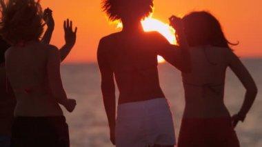 Young people having fun on beach — Stock Video