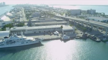 Cruise Ship Terminal, Dodge Island — Stock Video