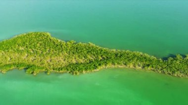 Aerial view Southern Sub tropical Island — Stock Video