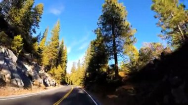Driving through Sonora mountain Pass — Stock Video