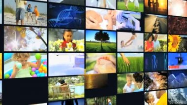 3D environmental montage wall Multi ethnic nature life holiday — Stock Video