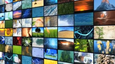 CG montage wall images nature life plants science graphics motion — Stock Video