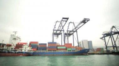 International shipping Terminal — Stock Video