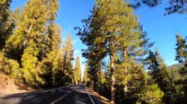 Sonora Pass Wilderness area — Stock Video