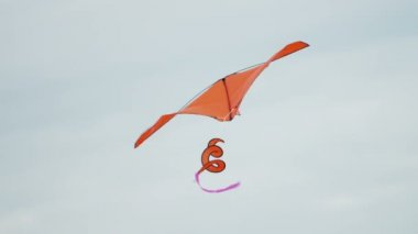 Kite with spiraling tail flying — Stock Video