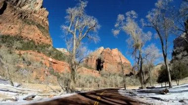 Driving through Zion National Park — Stock Video