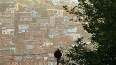 Hillside favela poor housing communities — Stock Video