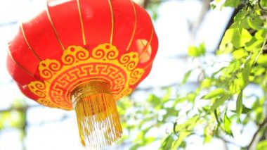 Chinese paper Lantern celebration happiness — Stock Video