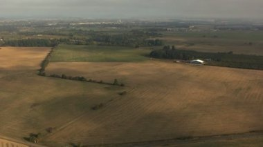 Oregon crops field agricultural landscape — Stock Video