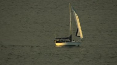 California Bay Pacific ocean Sailboat sailing — Stock Video