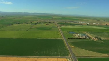 Aerial USA Idaho farming crops vegetation plant field farm — Stock Video