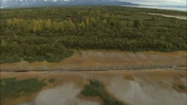 Aerial Alaska forest with melt water — Stock Video