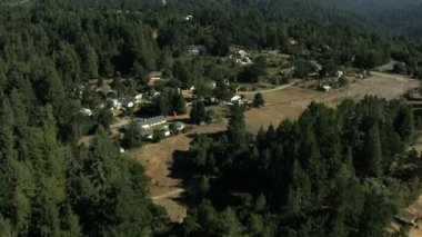 Aerial California USA farmland trees forest nature daylight — Stock Video